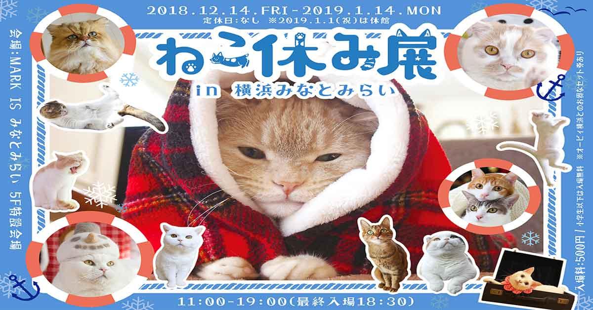 ชวนทาสแมวเที่ยวงานนิทรรศการ Neko Yasumi ที่มินาโตะมิไรแห่งเมืองโยโกฮาม่า